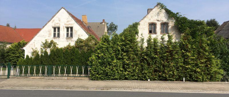 Zwei Häuslein, Frauenhain
