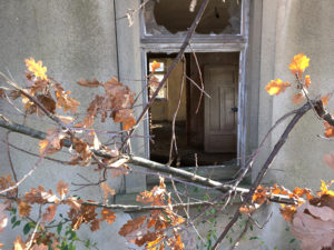 Der Herbst vor der Tür