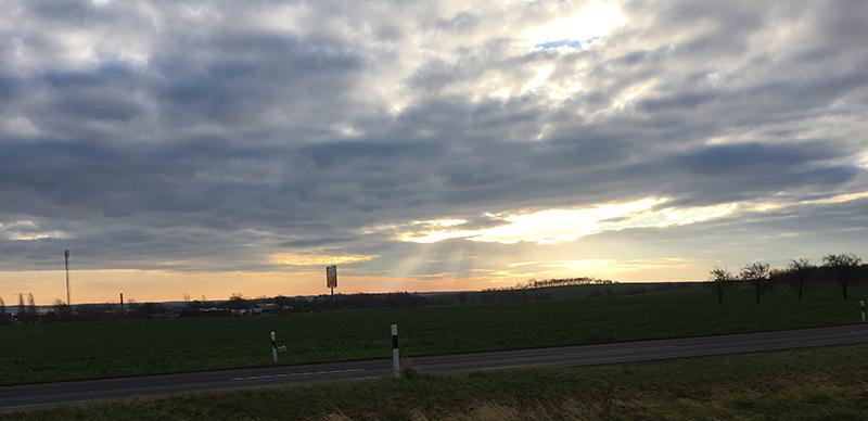 Morgenlicht an der B 101